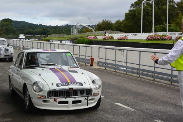 COTFC 2015 - Goodwood Motor Circuit - Photo 35
